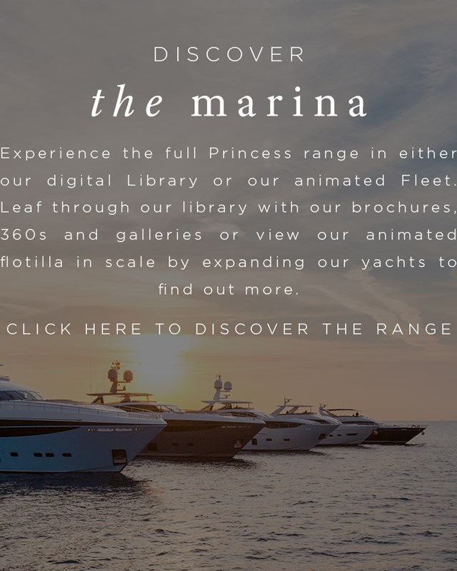 The Marina Image For Homepage With Cta