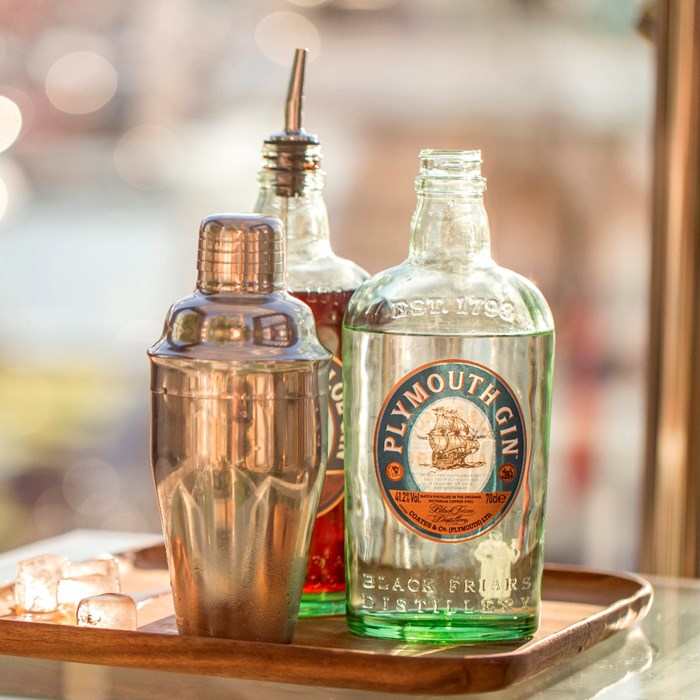 Bottle of Plymouth Gin with a cocktail mixer